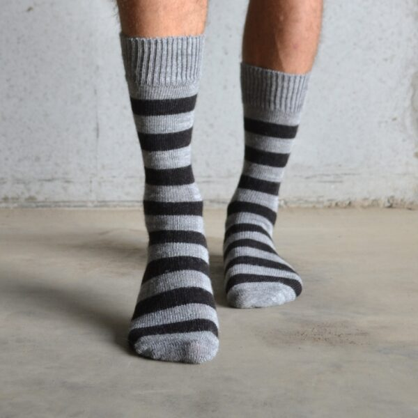 Alpaca – Dark stripe