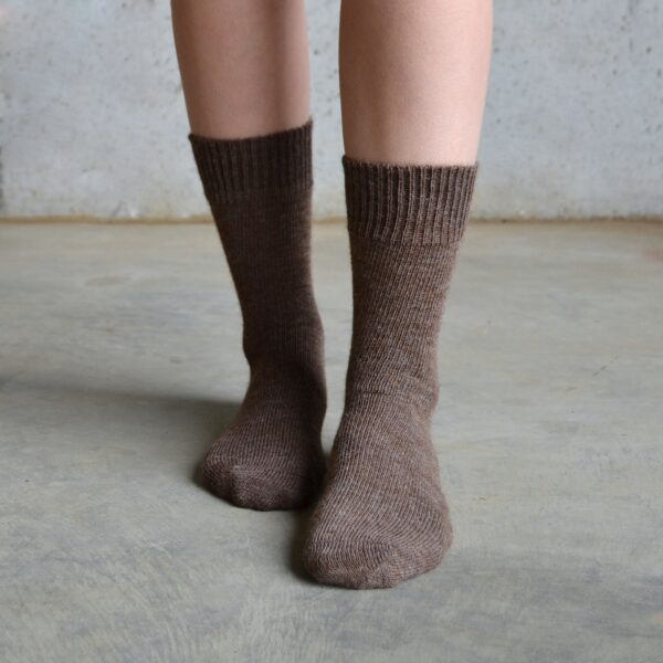 Alpaca – Brown